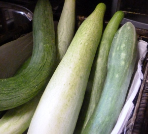 cucumbers from the garden